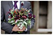 Flowers_ IMG_0549